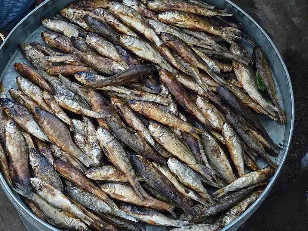 River fish -- both fresh and dried -- are a big part of the diet of Manipur's Meitei people, who are Hindus and do not eat pork or beef.