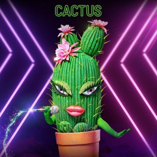 The Cactus on 'The Masked Singer'  (Photo: Channel 10)