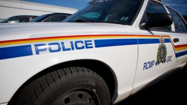 Red Deer drug trafficking investigation leads to 52 charges