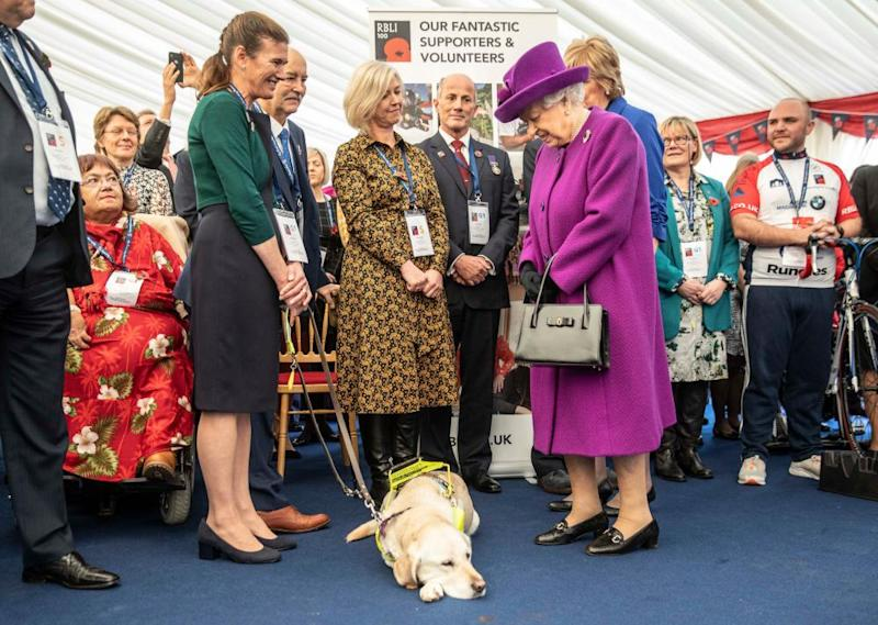 Dog to Queen: 'No, you get out of my way'.