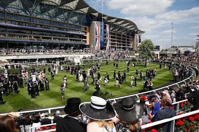 The five-day Royal Ascot meeting is one of the highlights of the horse racing calendar (AFP Photo/ADRIAN DENNIS)