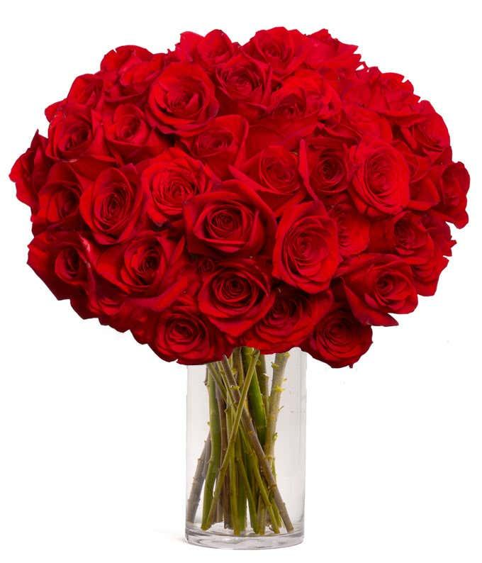 50 Long Stem Red Roses (Credit: From You Flowers)