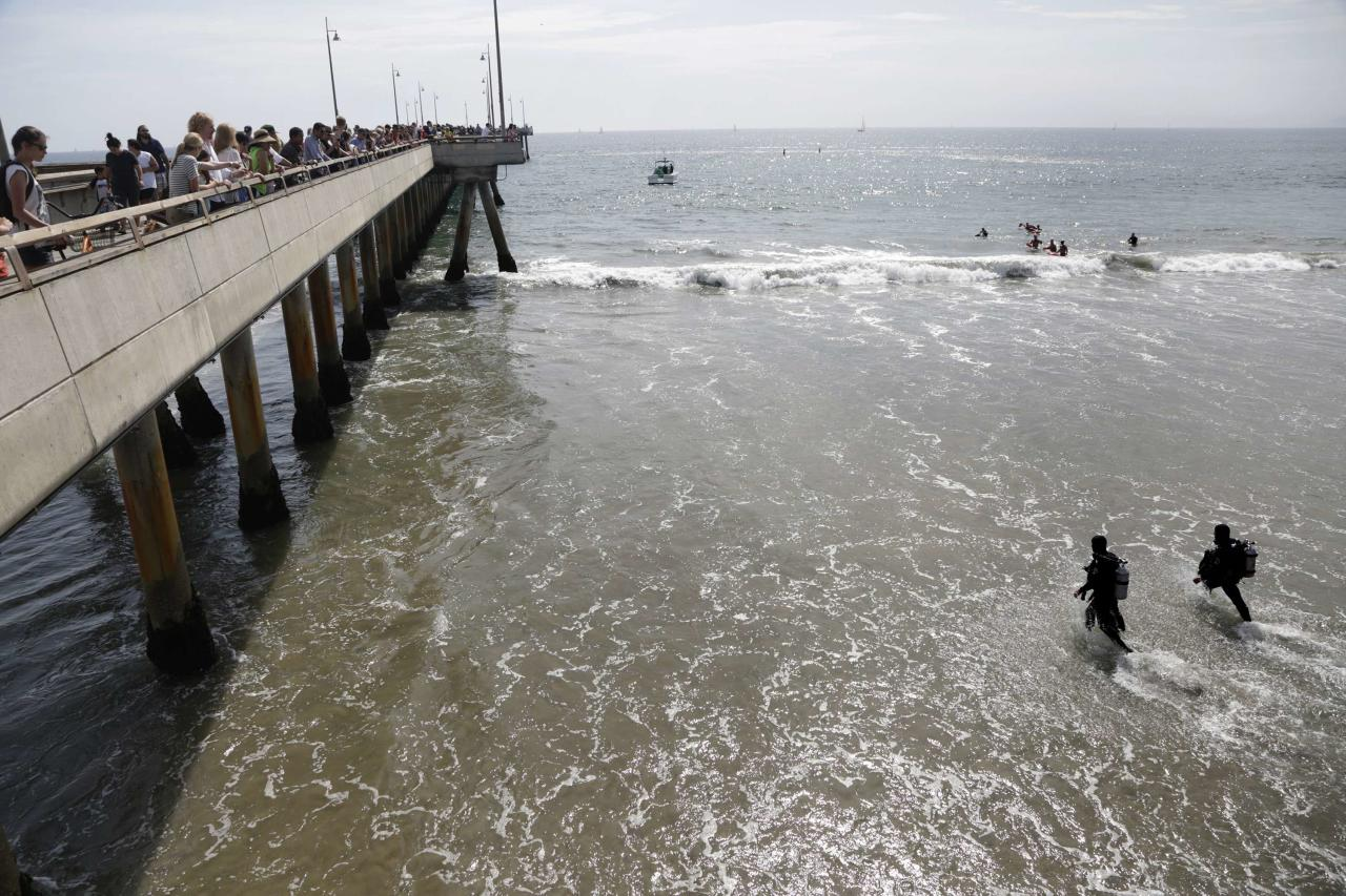 Rescue divers enter the waters near a pier for victims of a lightning strike that injured people in Venice, California July 27, 2014. As many as nine people were hurt on Sunday after being struck by lightning on Venice Beach in Los Angeles, emergency officials said. REUTERS/Jonathan Alcorn (UNITED STATES - Tags: DISASTER ENVIRONMENT)
