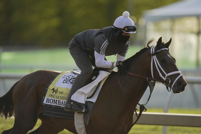 Preakness entrant Rombauer works out during a training session ahead of the Preakness Stakes horse race at Pimlico Race Course, Wednesday, May 12, 2021, in Baltimore. (AP Photo/Julio Cortez)