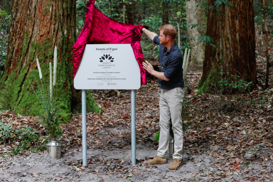 Prince Harry unveils a plaque for the Queen's Commonwealth Canopy initiative. Photo: Getty
