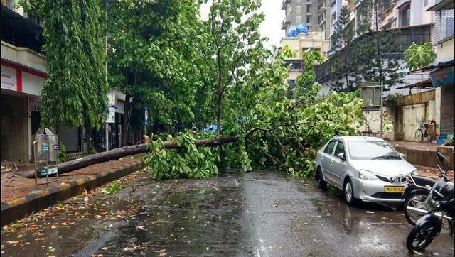 Cyclone Nisarga uprooted several trees in Raigad, Palghar and Pune districts. News18