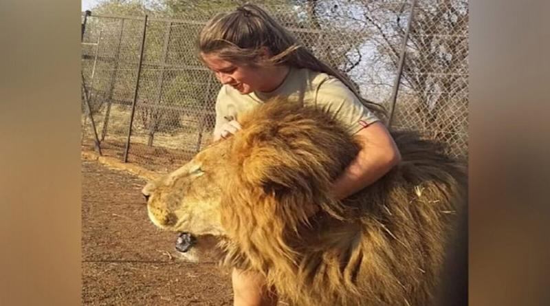 South Africa: 21-Year-Old Woman Mauled to Death at Safari Park by Pack of Lions