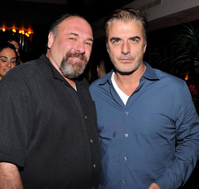 "NEW YORK, NY - NOVEMBER 26: Actors James Gandolfini and Chris Noth attend the after party for a screening of The Weinstein Company's ""Killing Them Softly"" hosted by The Cinema Society With Men's Health And DeLeon on November 26, 2012 in New York City. (Photo by Stephen Lovekin/Getty Images)"