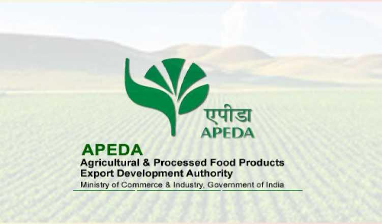 Agri, processed food products' exports dip 2 27 pc in Apr