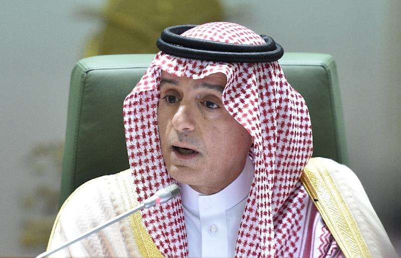 Saudi Foreign Minister Adel al-Jubeir speaks during a news conference about the killing of journalist Jamal Khashoggi (AFP Photo/Fayez Nureldine)