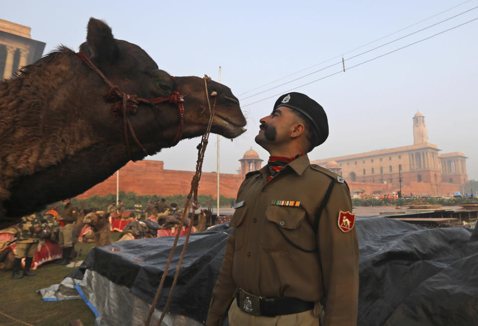 A Border Security Force soldier stands with his camel in between practice for the upcoming Republic Day parade in New Delhi, India, Thursday, Jan. 21, 2021. Republic Day marks the anniversary of the adoption of the country's constitution on Jan. 26, 1950. Thousands congregate on Rajpath, a ceremonial boulevard in New Delhi, to watch a flamboyant display of the country's military power and cultural diversity. (AP Photo/Manish Swarup)