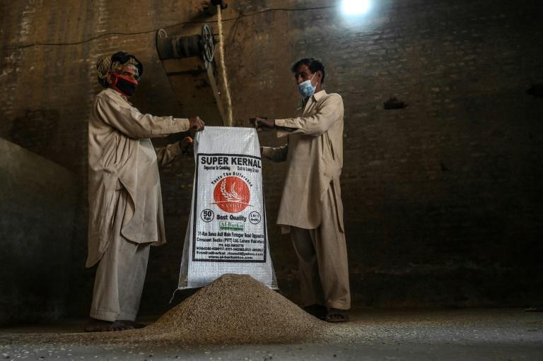 Pakistan has expanded basmati exports to the EU over the past three years, taking advantage of India's difficulties meeting stricter European pesticide standards