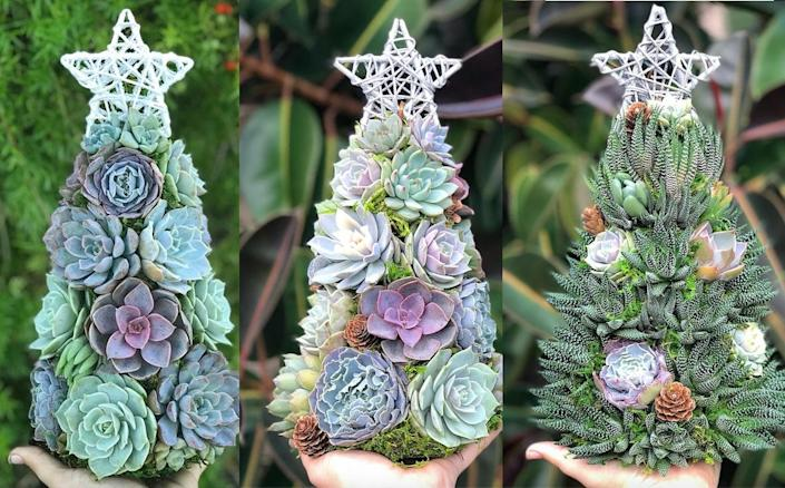 Succulent Christmas trees are the new trend in seasonal decor and we're all over it! (Terracotta Corner/Etsy)