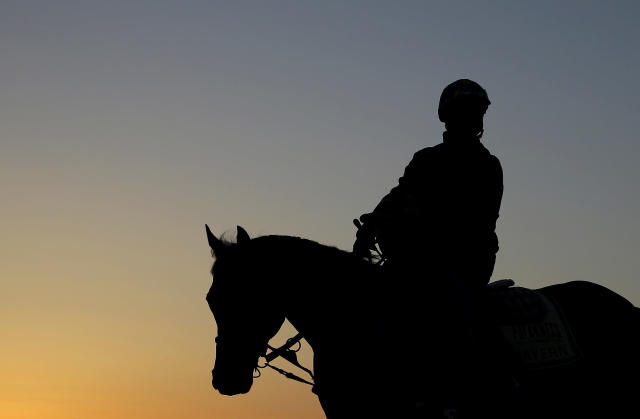 Bayern, with exercise rider Jorge Alvarez aboard, walks off the track after a workout as the sun begins to rise at Pimlico Race Course in Baltimore, Saturday, May 17, 2014, on the morning of the 139th running of the Preakness Stakes horse race. (AP Photo/Patrick Semansky)