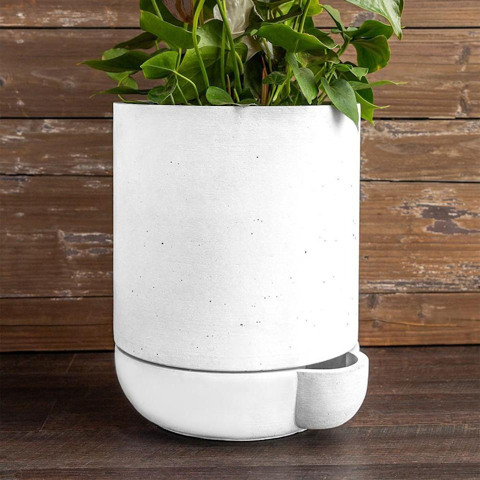 """<h2>West Elm The Simple Self-Watering Pot</h2><br><strong>Best For: Big Plants</strong><br>Most often, the smaller and tiny planters get all the love — they're cheaper, easy to decorate, and can go almost anywhere. But, when you're craving the grandeur of a lovely Monstera Deliciosa, where are you supposed to find a fitting home? This one-foot-tall pot from West Elm is your go-to for a self-watering planter that can handle your bigger shrubs. With up to 3 gallons capacity and frostproof cast-stone, feel free to set this pot can survive outside for years. <br><br><em>Shop</em> <strong><em><a href=""""http://westelm.com"""" rel=""""nofollow noopener"""" target=""""_blank"""" data-ylk=""""slk:West Elm"""" class=""""link rapid-noclick-resp"""">West Elm</a></em></strong><br><br><strong>West Elm</strong> The Simple Self-Watering Pot, $, available at <a href=""""https://go.skimresources.com/?id=30283X879131&url=https%3A%2F%2Fwww.westelm.com%2Fproducts%2Fthe-simple-pot-1-pint-d8855%2F"""" rel=""""nofollow noopener"""" target=""""_blank"""" data-ylk=""""slk:West Elm"""" class=""""link rapid-noclick-resp"""">West Elm</a>"""