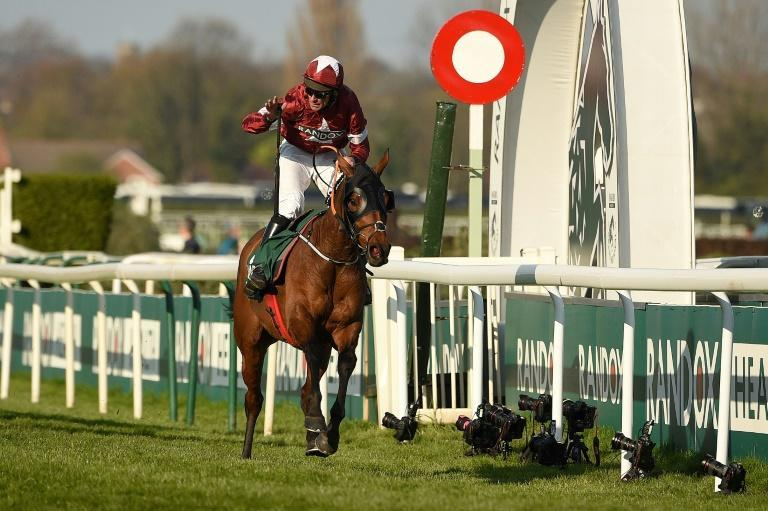 The Gordon Elliott-trained Tiger Roll won the Grand National in 2018 and 2019