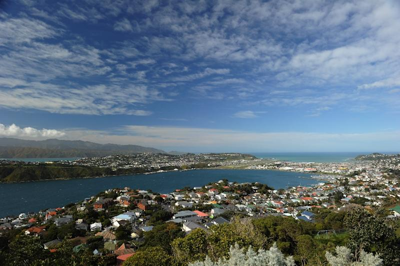 A view of Wellington as seen from Mount Victoria Lookout