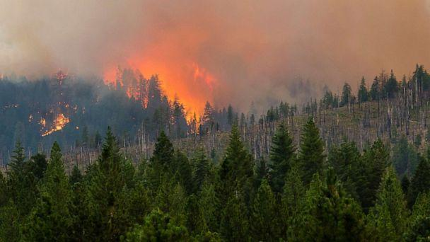 PHOTO: The Dixie fire in California, shown here on July 31, 2021, has grown to over 240,000 acres and is currently 30% contained. (Ty O'Neil/SOPA Images via ZUMA Wire via Newscom)