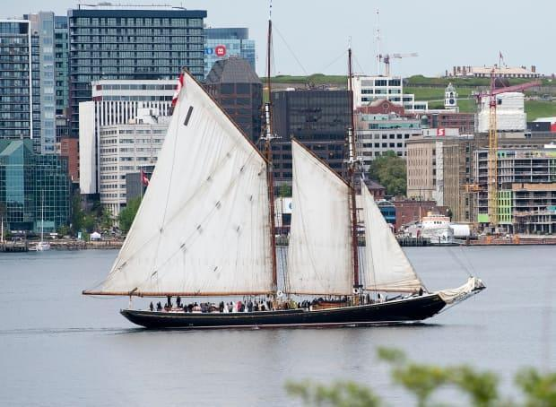 The schooner Bluenose II, Nova Scotia's sailing ambassador, cruises the harbour in Halifax in the pre-COVID-19 days of 2019.  (Andrew Vaughan/The Canadian Press - image credit)