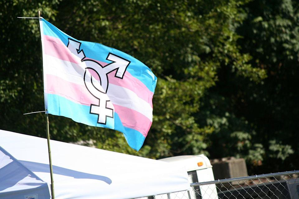 <p>Another variation on the flag is to include a symbol to represent transgender people (female (<strong>♀</strong>), male (<strong>♂</strong>) and Genderqueer (⚨) in a single circle) transposed on top of the five stripes. </p>