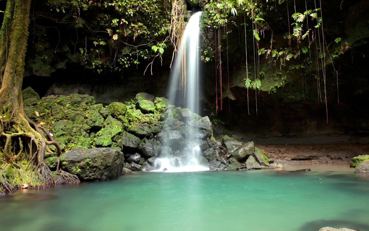 """<p><strong>Why Go: </strong>Dominica (not to be confused with the Dominican Republic) is a secret oasis known as the nature island. It's located halfway along the Eastern Caribbean archipelago and boasts tropical rainforests, rivers, waterfalls, and volcanoes. International flights from North America and Europe fly through Caribbean hubs like Barbados and Puerto Rico. A trip here is for the more adventurous traveler.</p> <p><strong>What to Do:</strong> Dominica is known for having some of the <a rel=""""nofollow"""" href=""""http://www.dominica.dm/index.php/diving"""">best diving</a> in the Caribbean, plus secret oases like the Emerald Pool, named for it's lush green color, which is located in the middle of the rain forest. Four sea turtle species lay their eggs along Dominica's shores, and although the mating and hatching season is over by December, it's still possible to spot a huge leatherback taking a leisurely swim.</p> <p><strong>Where to stay:</strong> <a rel=""""nofollow"""" href=""""http://rosaliebay.com/about.html"""">Rosalie Bay</a>, a family-owned eco resort built by hand over a nine-year period, sits 45 minutes from the capital city, Roseau. It's hidden among the foothills of the Morne Trois Pitons on 22 acres right where the Atlantic Ocean and Rosalie River intersect. The resort's restaurant, <a rel=""""nofollow"""" href=""""http://rosaliebay.com/dining.html"""">Zamaan</a>, serves dishes made with fresh ingredients from their garden. If you want to venture out, locals recommend <a rel=""""nofollow"""" href=""""http://www.papillote.dm/restaurant/"""">Papillote Rainforest Restaurant</a>. It's open to the public for lunch and dinner, set in the middle of the rainforest, and serves Creole-style island food. </p>"""