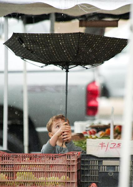 Jacob Melville, 4, of Irvine, Calif., catches rain drops as he holds the umbrella for his mother, Brandie, at the farmer's market in Laguna Hills, Calif., on Friday, Nov. 22, 2013. Rain throughout the West led to flooding Friday in parts of California. (AP Photo/The Orange County Register, Ken Steinhardt)