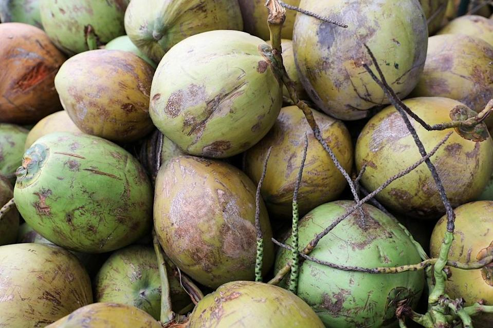 Malaysia collectively consumed coconuts weighing a total of 790,708,000kg or 790 million kg or 790,708 tonnes in 2020. — Reuters pic