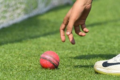 Both teams have been training with the pink ball ahead of the first day-night Test in India