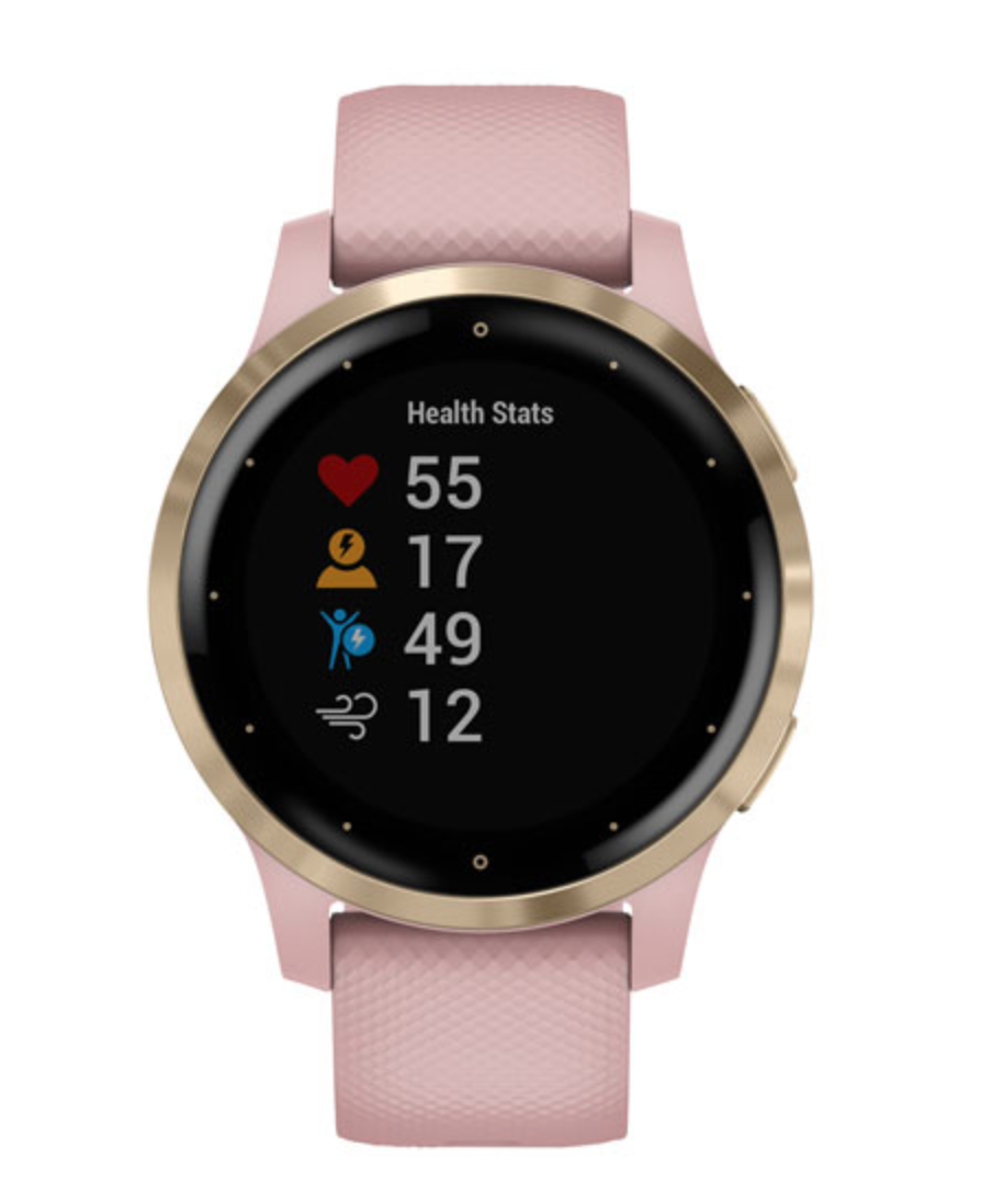 Garmin Vivoactive 4S GPS Watch in Dust Rose (Photo via Best Buy)