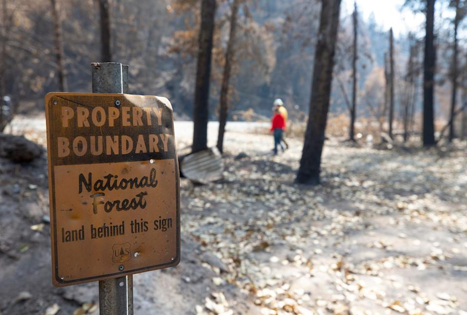 Erin and Leeon Hillman say their house, which was lost in the Slater Fire, was next to a national forest that was not being managed properly.