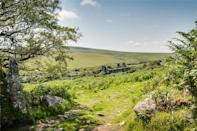 <p>The property is accessed by a rough track of about 3/4 mile long on the road between West Carne and Bowithick – and such is its remote location, the owner is offering to take viewers up the track in a 4×4 vehicle. </p>