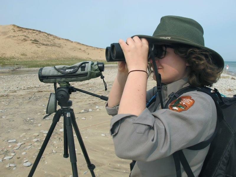 In this May 30, 2019 photo, Erica Adams, wildlife technician and lead piping plover staffer at Sleeping Bear Dunes, looks for the nesting birds in Glen Haven, Mich. Trouble is brewing for the piping plovers, already one of the Great Lakes region's most endangered species, as water levels surge during a rain-soaked spring that has flooded large areas of the Midwest. (AP Photo/John Flesher)