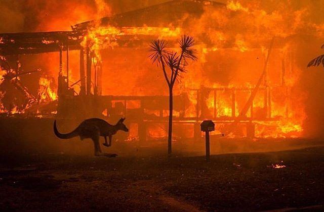 """<p><strong>Eva Longoria.</strong> """"Greta Thungberg: Australia is on fire. And the summer there has only just begun. 2019 was a year of record heat and record drought. Today the temperature outside Sydney was 48,9°C. 500 million (!!) animals are estimated dead because of the bushfires. Over 20 people have died and thousands of homes have burned to ground. The fires have spewed 2/3 of the nations national annual CO2 emissions, according to the Sydney Morning Herald. The smoke has covered glaciers in distant New Zealand (!) making them warm and melt faster because of the albedo effect.And yet. All of this still has not resulted in any political action. Because we still fail to make the connection between the climate crisis and increased extreme weather events and nature disasters like the <a href=""""https://www.instagram.com/explore/tags/australiafires/"""" rel=""""nofollow noopener"""" target=""""_blank"""" data-ylk=""""slk:#AustraliaFires"""" class=""""link rapid-noclick-resp"""">#AustraliaFires</a>That has to change.And it has to change now. My thoughts are with the people of Australia and those affected by these devastating fires.</p><p><a href=""""https://www.instagram.com/p/B68iJ3apv2g/"""" rel=""""nofollow noopener"""" target=""""_blank"""" data-ylk=""""slk:See the original post on Instagram"""" class=""""link rapid-noclick-resp"""">See the original post on Instagram</a></p><p><a href=""""https://www.instagram.com/p/B68iJ3apv2g/"""" rel=""""nofollow noopener"""" target=""""_blank"""" data-ylk=""""slk:See the original post on Instagram"""" class=""""link rapid-noclick-resp"""">See the original post on Instagram</a></p><p><a href=""""https://www.instagram.com/p/B68iJ3apv2g/"""" rel=""""nofollow noopener"""" target=""""_blank"""" data-ylk=""""slk:See the original post on Instagram"""" class=""""link rapid-noclick-resp"""">See the original post on Instagram</a></p><p><a href=""""https://www.instagram.com/p/B68iJ3apv2g/"""" rel=""""nofollow noopener"""" target=""""_blank"""" data-ylk=""""slk:See the original post on Instagram"""" class=""""link rapid-noclick-resp"""">See the original post on Instagram</a></p><p><"""