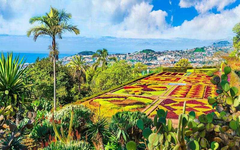 Madeira Botanical Garden has sweeping views over the city of Funchal - iStock