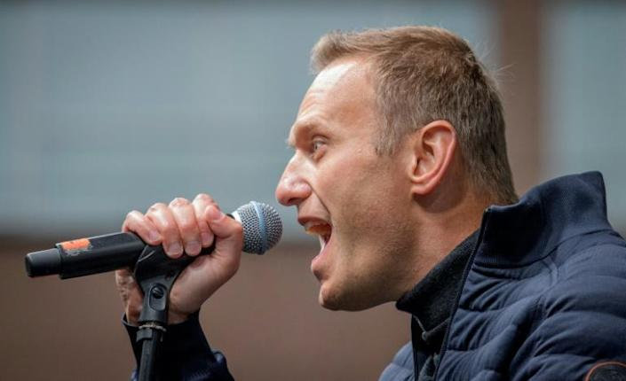 Navalny's group often publishes investigations into top state officials (AFP Photo/Yuri KADOBNOV)
