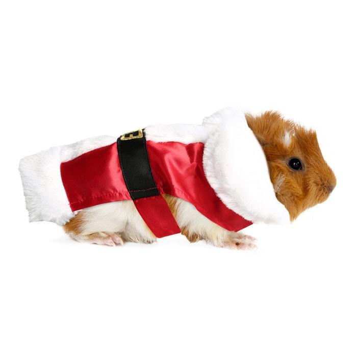 "<p>Or how about this vest (available in S-L). Santa hasn't ever looked so furry or cute. <br /><a rel=""nofollow"" href=""https://www.petbarn.com.au/christmasgiftguide#view=catalogue2&saleId=24873&page=1"">Photo: Petbarn</a> </p>"