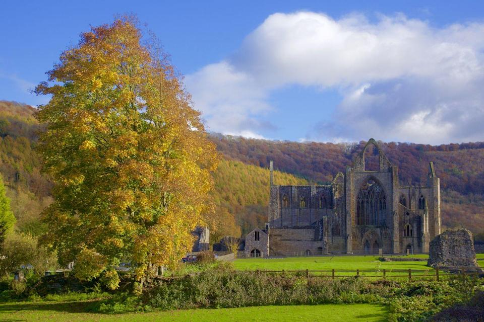 """<p>If you live in wales, Tintern Abbey in autumn is unmissable. This gothic masterpiece is perfect for history lovers to explore, thanks to its 500-year-old architecture. </p><p><a class=""""link rapid-noclick-resp"""" href=""""https://cadw.gov.wales/visit/places-to-visit/tintern-abbey"""" rel=""""nofollow noopener"""" target=""""_blank"""" data-ylk=""""slk:BOOK NOW"""">BOOK NOW</a></p>"""