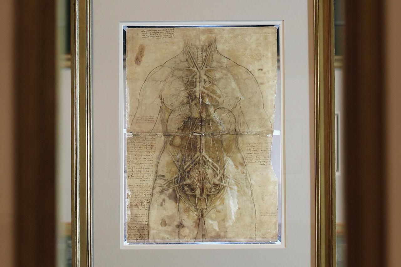 LONDON, ENGLAND - APRIL 30:  A drawing, dated 1509-10, by Leonardo da Vinci of a woman's cardiovascular system is displayed as part of new Leonardo da Vinci exhibition entitled 'Anatomist: Inside His Mind, Inside The Body' at The Queen's Gallery, Buckingham Palace on April 30, 2012 in London, England. The exhibition is the largest collection ever of the artist's studies of the human body, and will show at The Queen's Gallery from May 4 - October 7, 2012.  (Photo by Dan Kitwood/Getty Images)