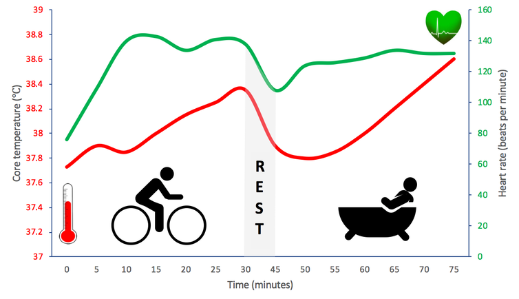 Line graph showing heart rate (green) and temperature (red).