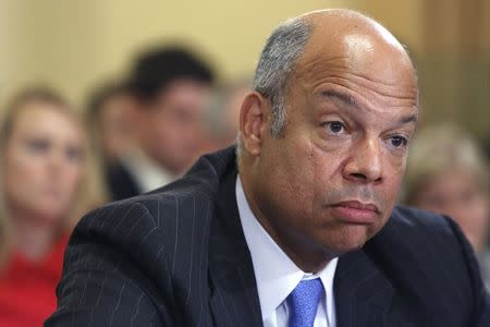 Johnson testifies at a House Homeland Security Committee hearing on unaccompanied minors crossing the border into the U.S., on Capitol Hill in Washington