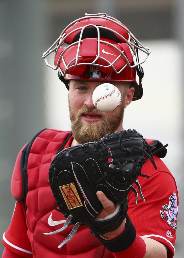 Cincinnati Reds catcher Tucker Barnhart reaches out to catch a baseball during workouts at the Reds spring training baseball facility, Wednesday, Feb. 13, 2019, in Goodyear, Ariz. (AP Photo/Ross D. Franklin)