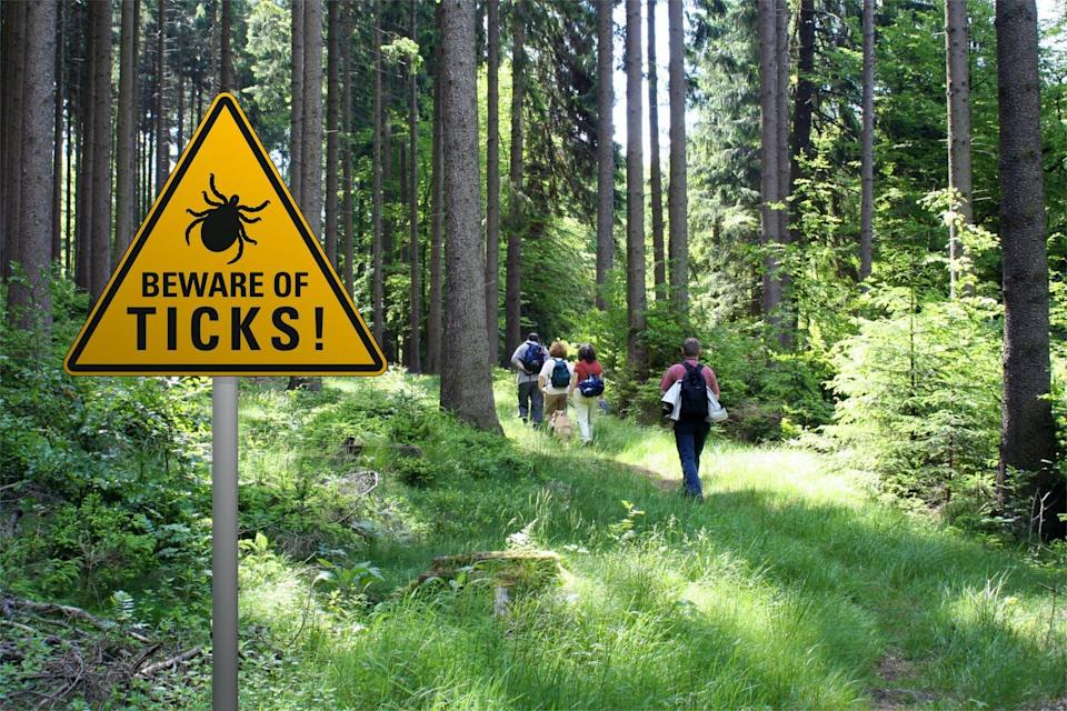 A warning sign reading 'Beware of ticks!' in the foreground, with a group of hikers entering a forested area in the background.