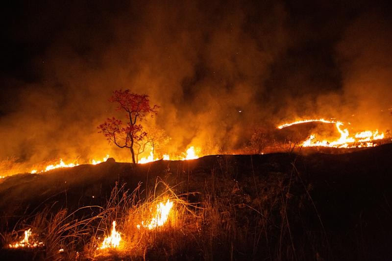 "19 September 2020, Brazil, Sao Joao Da Aliança: Fire burns in the National Park Chapada dos Veadeiros. Fires also burn in the Pantanal, the world's largest wetland. The fires have already destroyed one fifth, some 30,000 square kilometres, of the Pantanal area in the states of Mato Grosso and Mato Grosso do Sul - an area larger than Israel. (to dpa ""Forest fires in Brazil: Bolsonaro refuses criticism"" from 21.09.2020) Photo: Myke Sena/dpa (Photo by Myke Sena/picture alliance via Getty Images)"