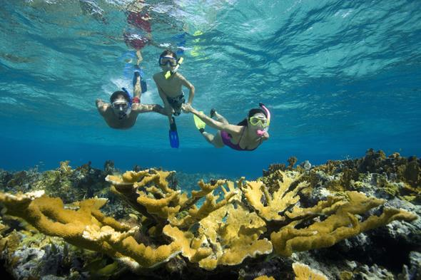best things to do on a family holiday in the caribbean