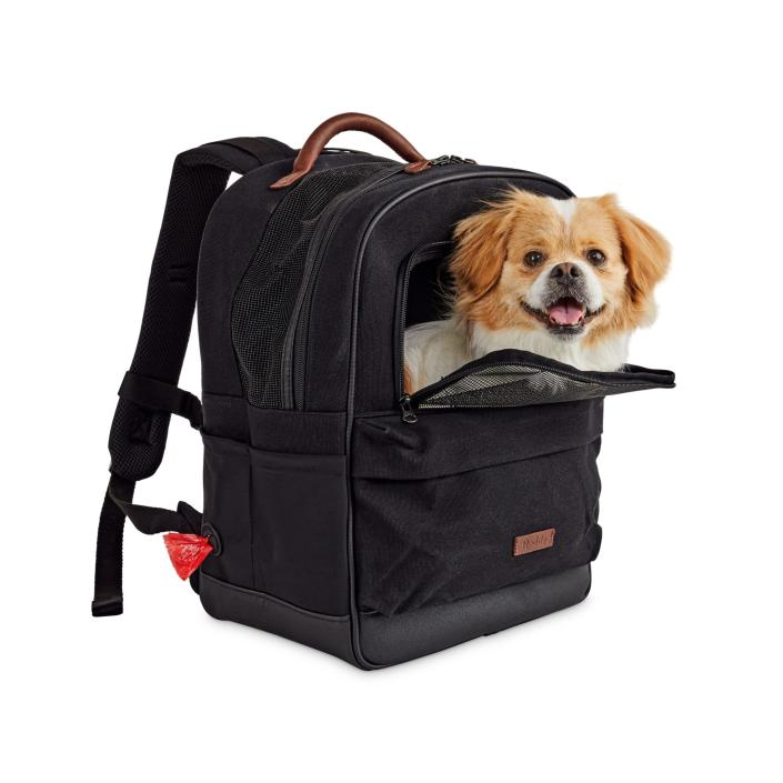"Reddy Black Cotton Canvas Pet Carrier Backpack, 16"" H x 13"" W x 8"" D"