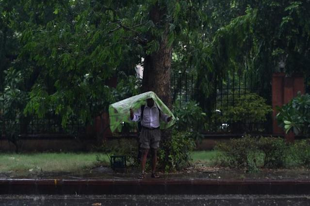 An Indian man shelters under a plastic sheet during heavy monsoon rains in New Delhi (AFP Photo/Money SHARMA )