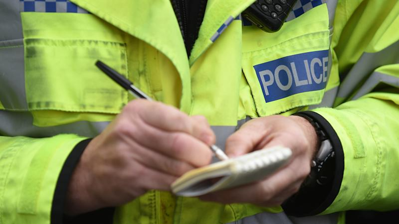 <p>The 27-year-old pregnant woman was struck on the head before her bag was stolen while she was on Crow Road in Glasgow.</p>
