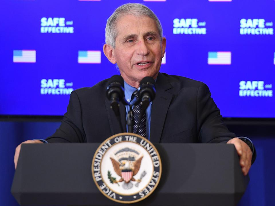 Dr Anthony Fauci speaks on 18 December 2020 in Washington, DC (SAUL LOEB/AFP via Getty Images)