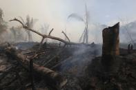 Fires surge in Brazilian Amazon for the third straight year in Labrea
