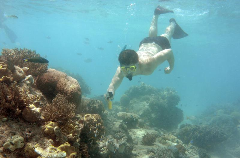 Some two million tourists travel to the Great Barrier Reef each year (AFP Photo/William West)